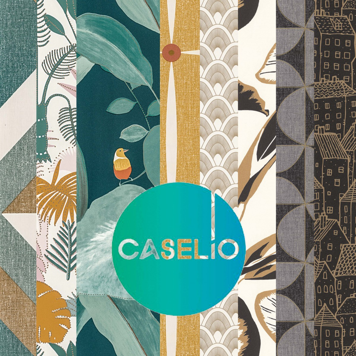 caselio-couverture-1