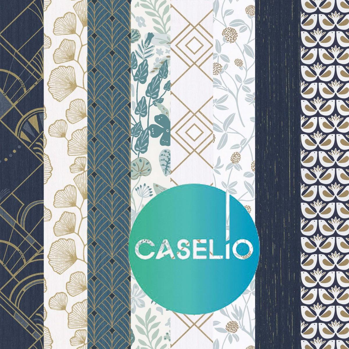 caselio-couverture-2-1