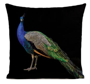 royal-peacock-black