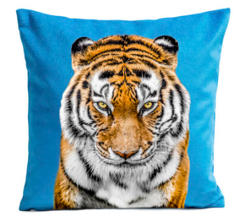 tiger-blue